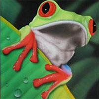 Manipulación de anfibios