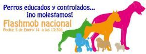 Flashmob por el acceso de los perros a más lugares públicos