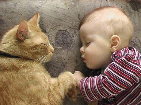 El gato y los niños