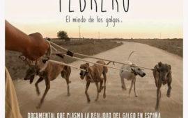 Entrevista a Irene Blanquez, directora del documental «Febrero El Miedo a Los Galgos»