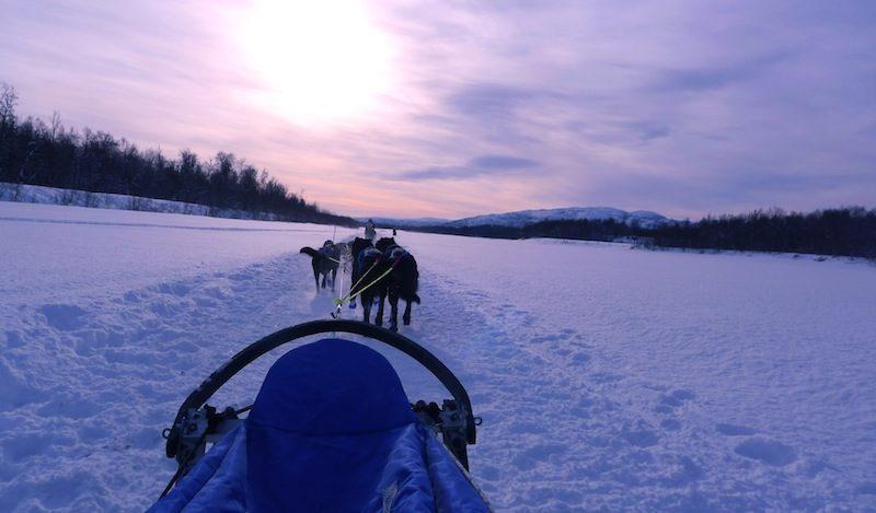 Arranca la Finnmarksløpet, la carrera de trineos de perros más larga y septentrional de Europa