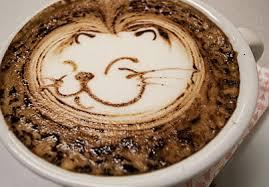 La 'neko-moda': tomarse un café rodeado de gatos