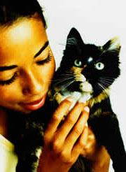 Alergia a los gatos: ocho pasos para acabar con ella