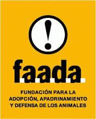 Campaña de Identificación y Esterilización de Animales de compañía a precios reducidos en la Comunidad de Madrid