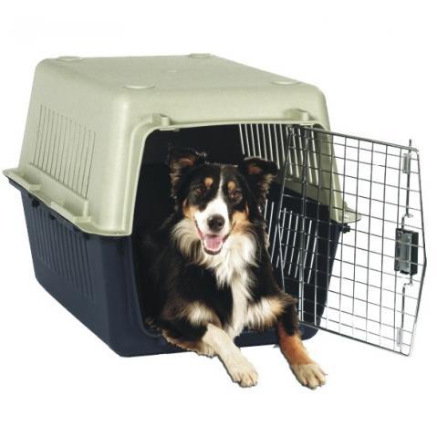 Elegir el transportín adecuado para el perro