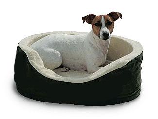 Las ventajas de los moises, colchones, cunas, almohadones para nuestras mascotas
