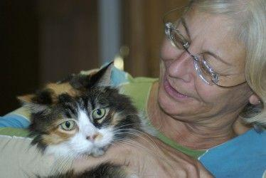 ¿Mi gato tiene alzhéimer? Cinco claves para descubrirlo