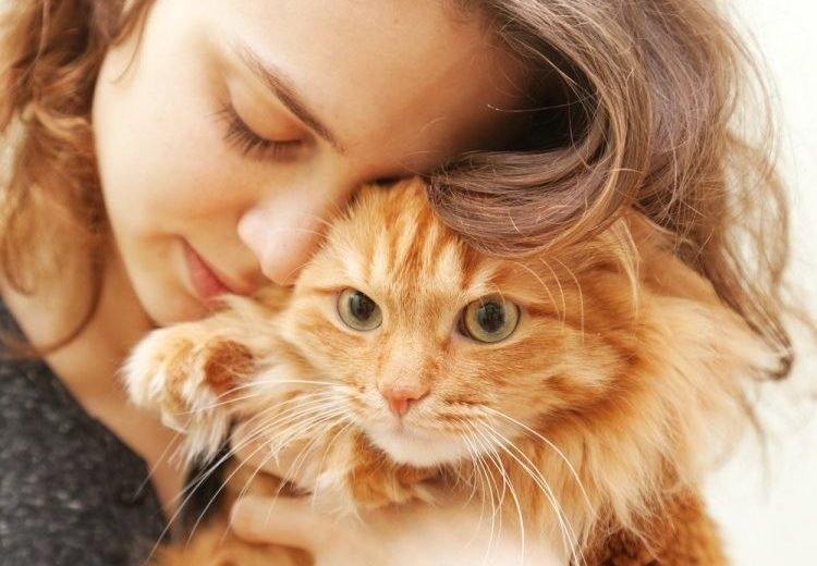 Seis ayudas cuando tu perro o gato muere