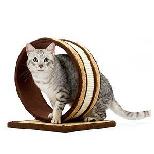 El rascador ideal para el gato