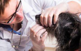 Un IVA veterinario bajo protege a perros, gatos ¡y humanos!