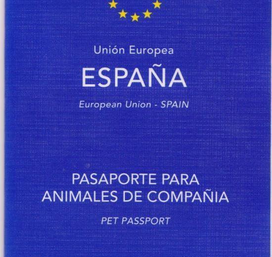 Requisitos legales para viajar al extranjero con tu mascota