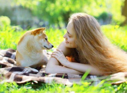 El estrés de los perros a largo plazo está vinculado a la relación dueño-perro