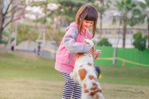 Mamá, papá quiero un perro, ¿adoptamos uno?