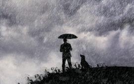 No para de llover, ¿qué hacemos con el perro?