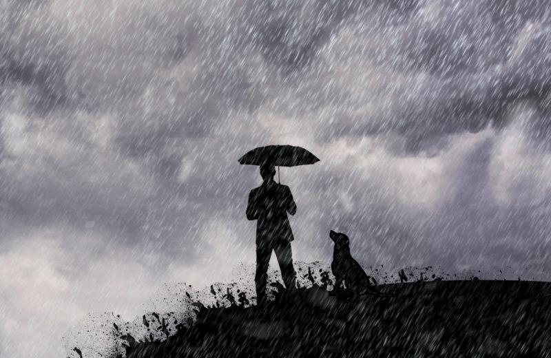 LLuvia con perro