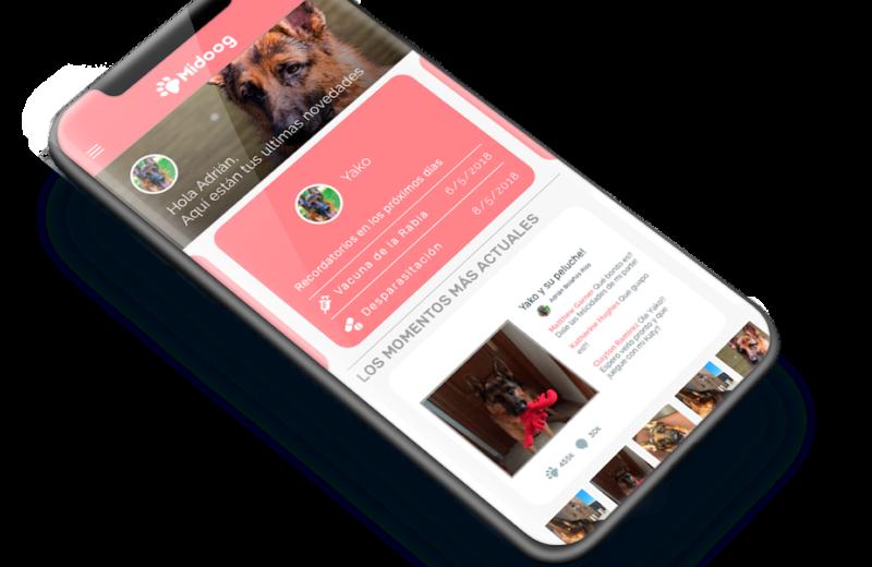 Midoog, una aplicación para tu perro o gato que no te puedes perder