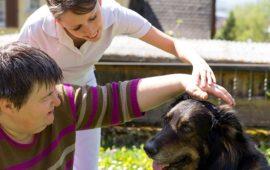Terapia con perros: La increíble ayuda que puede curar tu enfermedad