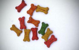 Galletas caseras para perros, recetas veloces en el microondas