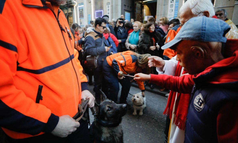 Celebrando San Antón, Patrón de los animales