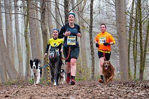 Animales y deporte: si ellos juegan, ellos cuentan