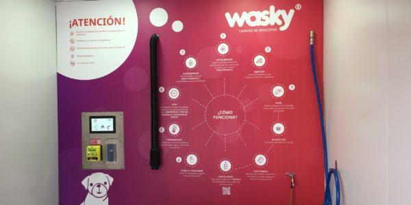 Wasky1