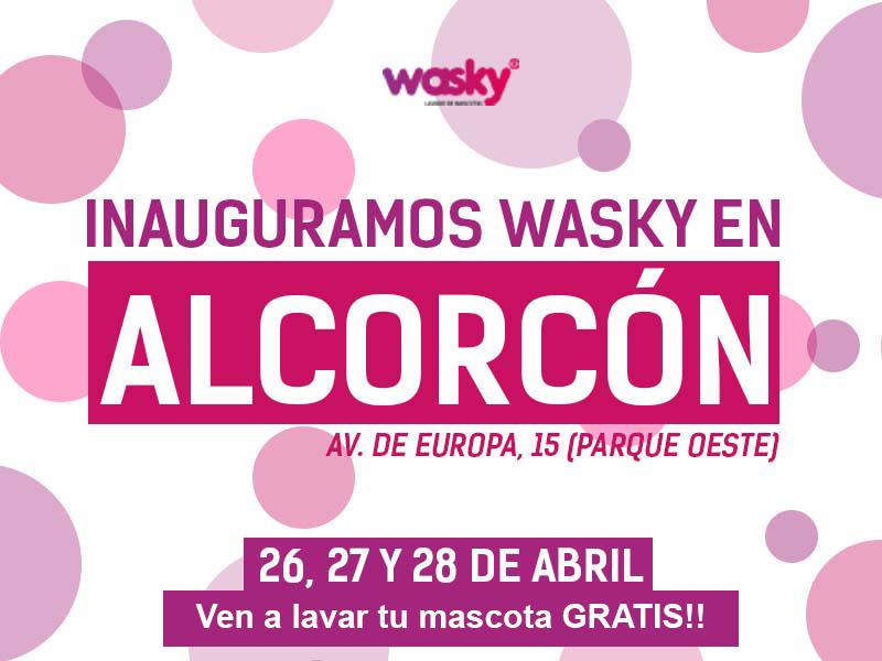 Llega Wasky, autolavado de mascotas al Parque Oeste de Alcorcón.