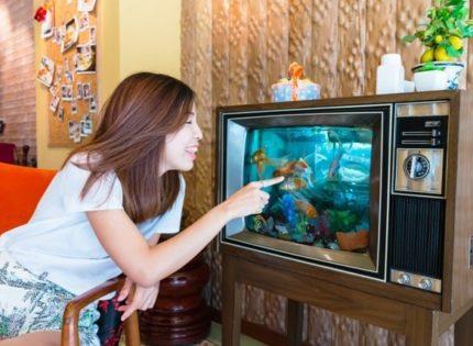Acuario y televisión, ¿es recomendable situarlos al lado?