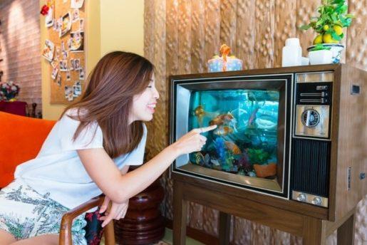 Acuario televisión