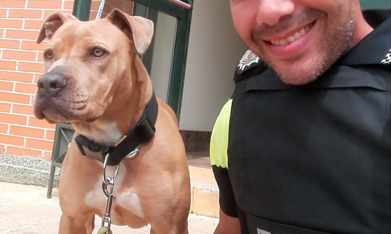 Hoy entrevistamos a Cristóbal López, miembro de Life4pitbulls