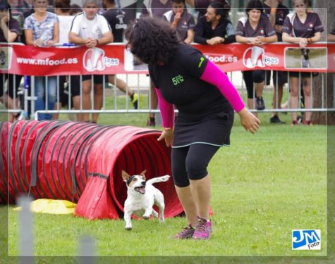 Zoe Club de Agility Cinco Huesos