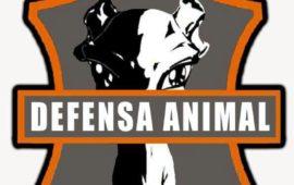 La Brigada de Defensa Animal