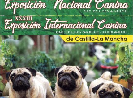 Exposición canina Sonseca (Toledo)