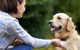 Si tienes un perro vivirás más, te explicamos el por qué.