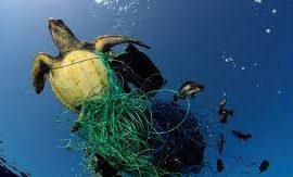 640.000 toneladas de redes de pesca abandonadas 'estrangulan' a los océanos y su fauna