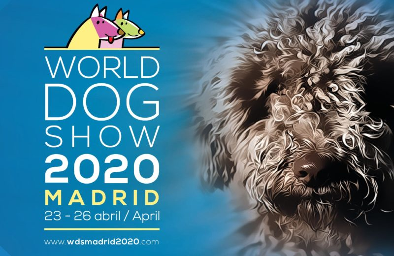 Cartel World Dog Show
