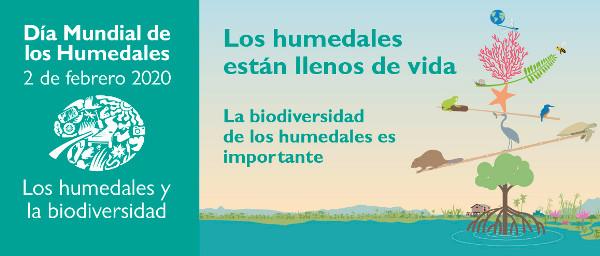 Celebramos el Día Mundial de los Humedales el 2 de febrero