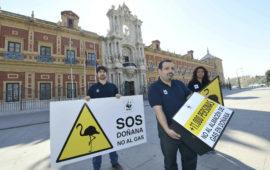 Celebramos la sentencia contra los almacenes de gas de Naturgy en Doñana