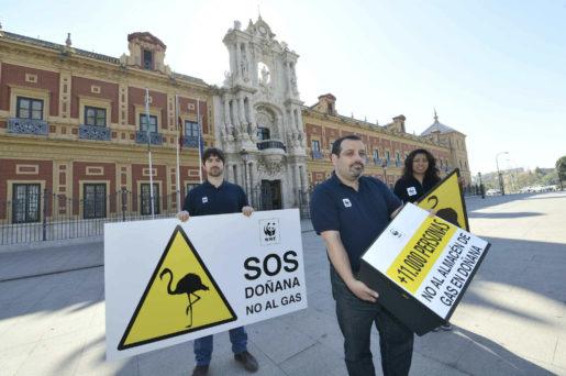 Sentencia Doñana Gas