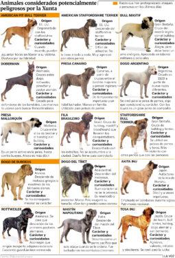 Perros de raza peligrosa Xunta de Galicia