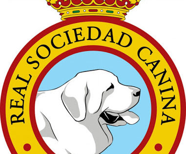 Visita a la Real Sociedad Canina de España – 1º Parte