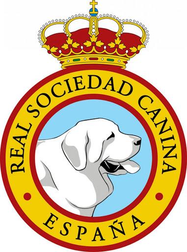 Entrevistamos a la José Miguel Doval de la Real Sociedad Canina de España