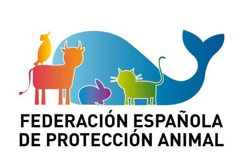 La FEPA solicita al gobierno un paquete de ayudas a las entidades de protección animal afectadas por el Estado de Alarma
