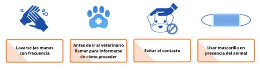 Infografía perros coronavirus