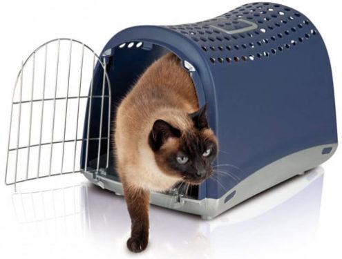 Transporte para mascotas - Transportín gatos