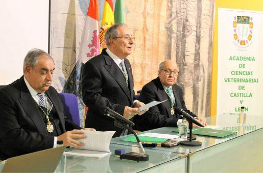 Catedrático Elías Fernando Rodríguez Ferri.