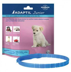 Accesorios perros - Adaptil Collar Junior