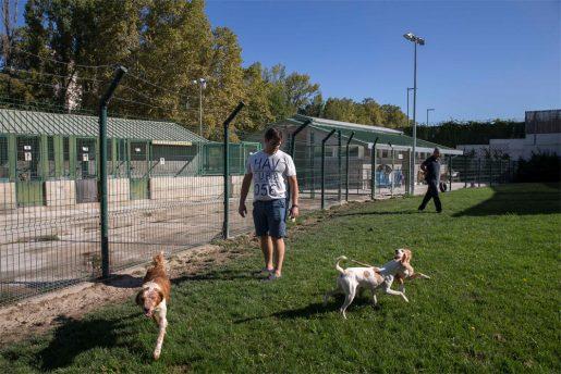 Centro de Atención a Animales del Ayuntamiento de Pamplona