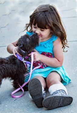 Niña y perros