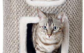 Rascadores para gatos, un complemento fundamental
