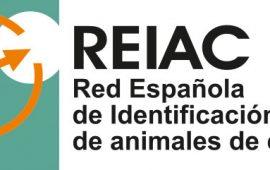 La REIAC se reúne con Sergio Torres para abordar detalles de la nueva Ley de Protección Animal